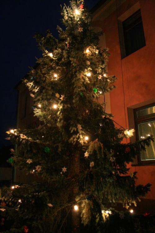 Mikulášské rozsvícení stromečku