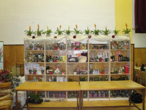 2012 01 13 Květinový ples
